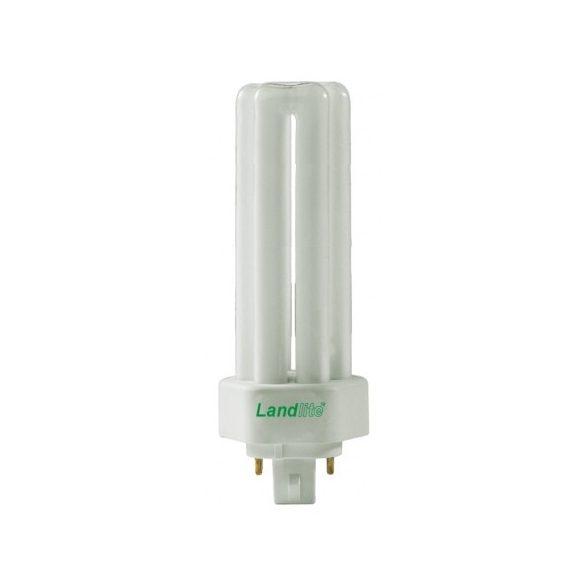 LANDLITE Energy saving, GX24q-4, 42W, 1850lm, 4000K, fluorescent lamp (TUE-42W)