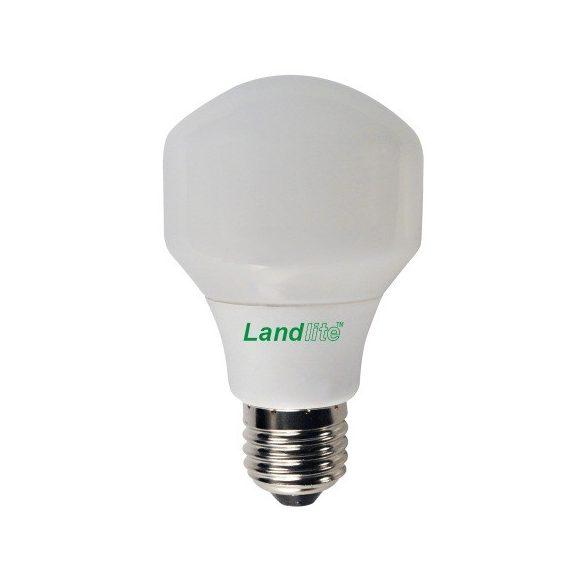 LANDLITE Energy saving, E27, 13W, T60, 680lm, 2700K pear shaped bulb (ELN-13W)