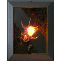 LANDLITE SHELL LIGHT-003, 1xG9 230V 25W, shell lamp