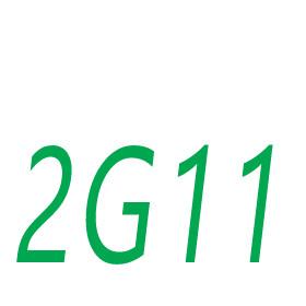 2G11 socket