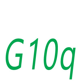 G10q socket