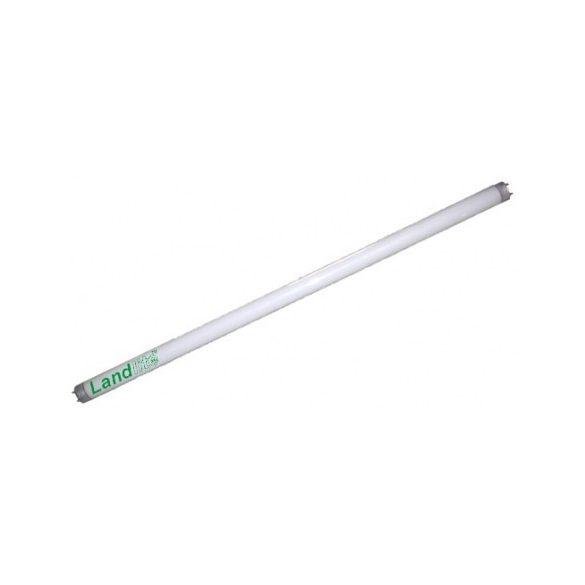 LANDLITE Traditional, T5, 549mm, 24W, 1750lm, 4000K fluorescent tube (T5-HO-24W)